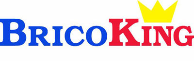 bricoking-logo-ok.jpg